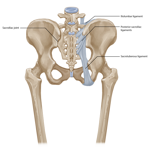 SacroIliac Joint Pain Treatment | Chronic Joint Pain ...